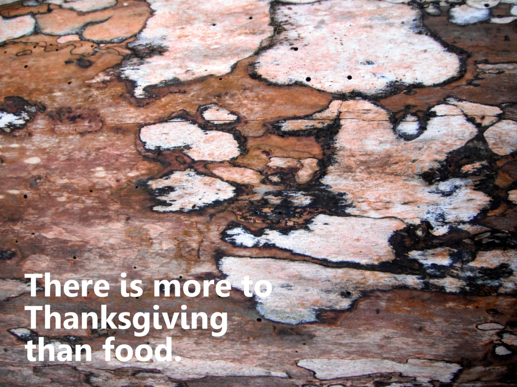 there is more to thanksgiving than food